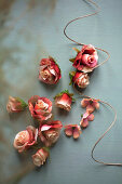 Roses and twine on grey surface