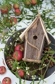 Alter Topf mit Weihnachtsäpfeln, Misteln und Vogelhaus