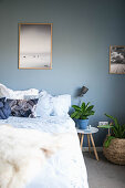 Double bed, houseplants and large photos in bedroom with blue-grey walls