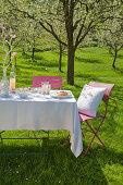 Gedeckter Tisch unter blühendem Kirschbaum im Garten