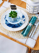 Maritime place setting with a small potted plant