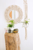 Mirror with macrame frame, houseplant on tree stump table and macrame plant holder