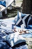 Picnic blanket with pillows under a tree