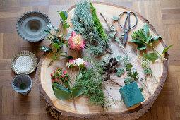 Floristik-Material auf einer Baumscheibe