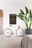 Fahrrad und Baumstrelitzie im schlichten Schlafzimmer