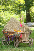 Handcart filled with straw and decorated for autumn
