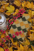 Hot-water bottle with hand-knitted cover amongst autumn leaves