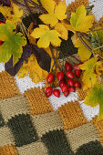 Rose hips on knitted fabric in autumnal shades