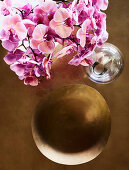 Orchid flowers and brass bowl