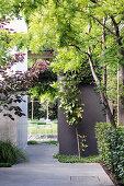 Green passage in the garden