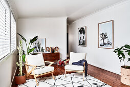 Upholstered armchairs and houseplants in bright interior