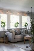 Grey sofa below windows with houseplants on sills in living room