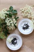 Stillleben mit Holunderblüten und Teller mit Käfermotiv auf Papier