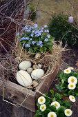Easter Basket In Old Drawer