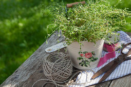 Thyme in zinc bucket decorated with rose motif