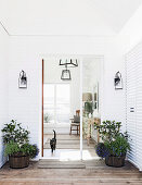 Entrance area with plant pots and glass door