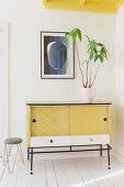 Houseplant on retro sideboard in yellow, black and white
