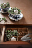 Speckled eggs in Easter nest in blue-and-white china teacup on table with open drawer