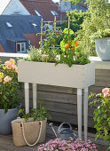 DIY planter on balcony