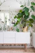Large houseplant on white sideboard below round mirror on botanical wallpaper