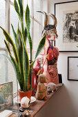 Bizarre arrangement of human anatomy models decorating windowsill