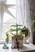 Miniature fir tree in paper bag as festive decoration in front of window