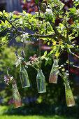 Wildflowers in glass bottles hung in flowering fruit tree
