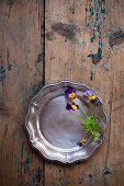 Violas on pewter plate