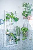 Grünpflanzen im Badezimmer mit Mosaikfliesen