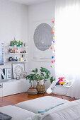 Schalenstuhl, Zimmerpflanzen und Lowboard in weißem Wohnzimmer