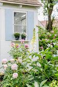 Pastellige Kombination mit Rosen und Fingerhut