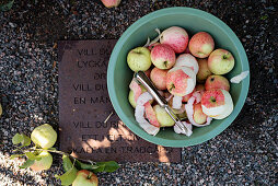 Peeled apples and freshly-picked apples in bucket on metal plaque