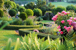 Garden with box hedges, ferns, roses and ornaments