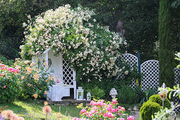 Rose arbour in sloping garden