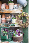 Violas and wreath of beech twigs on shelves of gardening equipment
