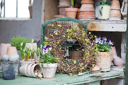 Wreath of beech branches and voilas on potting table