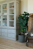 Houseplant in a metal pot next to a gray display cabinet