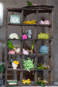 Spring flowers and vintage-style accessories in old display case