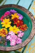 Phlox, calliopsis, French marigolds and verbena flowers floating in bowl of water