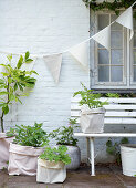 Pennant chain over plants in cloth sacks on the white brick house