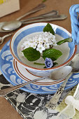 White scented snowball in a teacup with silver spoons