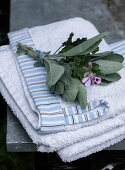 A bunch of sage leaves and geraniums on towels with striped trim
