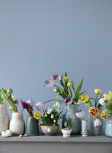 Tulips, hyacinths, daffodils, and grape hyacinths in different vases