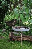 A DIY bird bath made from a plant tray in a garden
