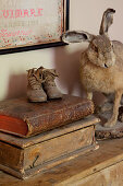 Antique books and shoes next to stuffed hare on top of chest of drawers