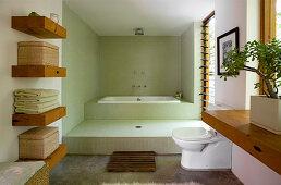 Shower and bathtub in split-level, minimalist bathroom