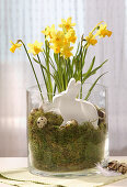 Handmade rabbit ornament in glass vase full of moss and narcissus