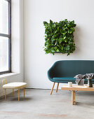 Devil's ivy in square green wall planter above sofa