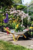 Schubkarre mit Sommerblumen und Gartengerät