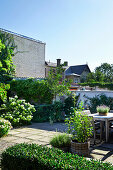 Paved terrace, potted plants and beds in urban garden